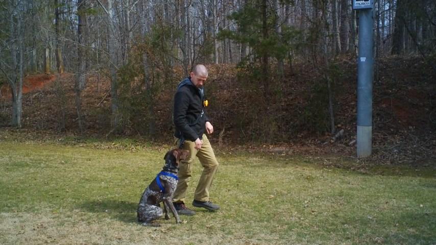 Hudson Training